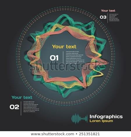 Modern vektor absztrakt infografika elemek használt Stock fotó © jiunnn
