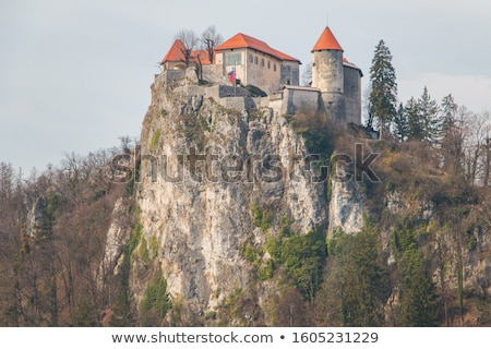bled castle on a precipice overlooking bled lake with tourists a stock photo © kayco