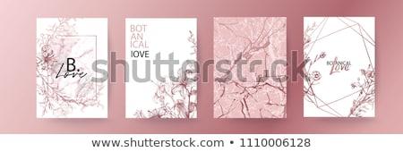 VIP golden greeting card, vector illustration Stock photo © carodi