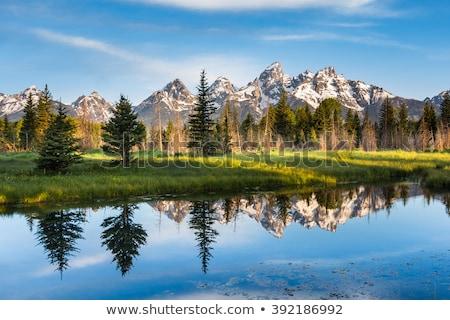 grand teton national park stock photo © pedrosala