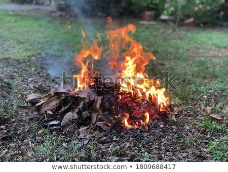 Yanan yaprakları yangın ön plan Stok fotoğraf © marcrossmann
