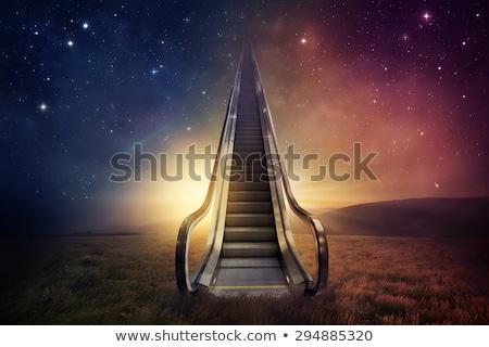 Lépcsősor felfelé menny virágok égbolt Stock fotó © cherezoff