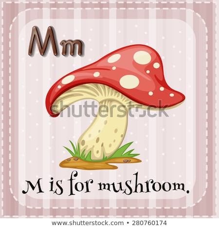 Flashcard letter M is for mushroom Stock photo © bluering