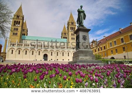 Bazilika katedrális Magyarország égbolt ablak szobor Stock fotó © vladacanon