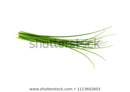Stockfoto: Vers · bieslook · voedsel · schotel · kom
