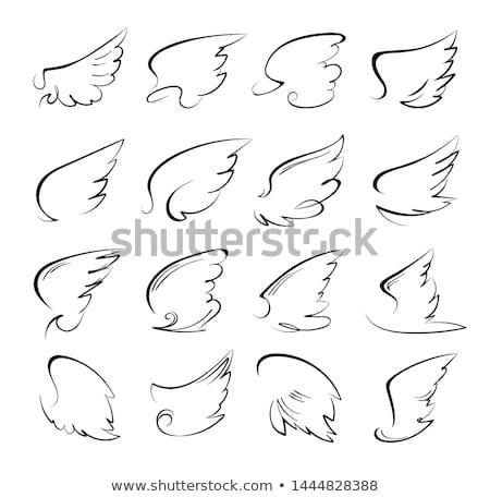 Stylized dove Stock photo © blackmoon979