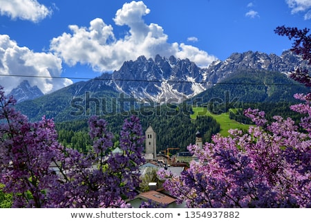 innichen stock photo © val_th