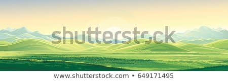 Nature landscape illustration Stock photo © sgursozlu