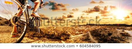 siluet · bisikletçi · binicilik · dağ · bisikleti · iz · gün · batımı - stok fotoğraf © carloscastilla