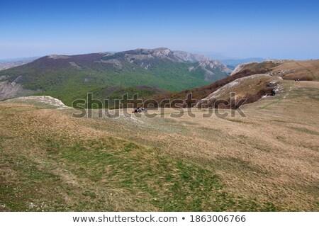 Stockfoto: Mooie · daglicht · Blauw · zee · groene