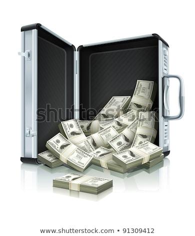 Bőrönd pénz izolált tok pénz papír Stock fotó © popaukropa