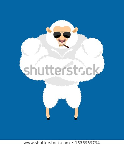 sheep strong cool serious ewe smoking cigar emoji farm animal stock photo © popaukropa