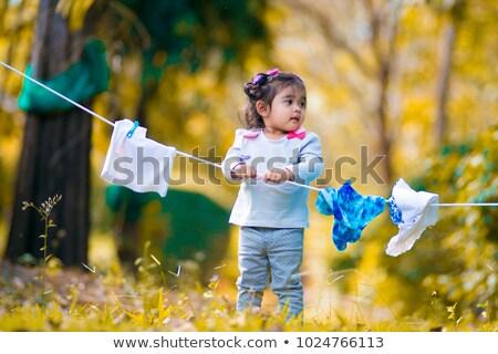 lavaggio · giorno · lavanderia · natura · verde - foto d'archivio © is2