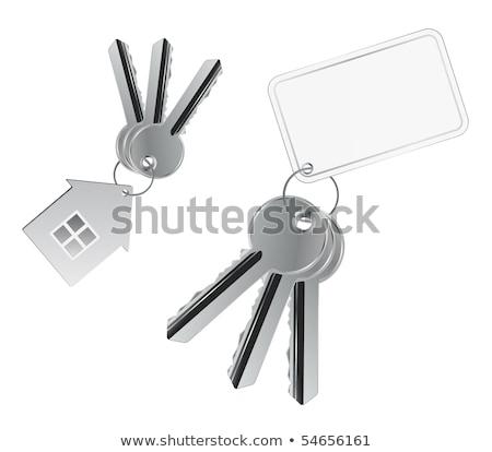 Bos sleutels visitekaartje Rood leder business Stockfoto © shutter5