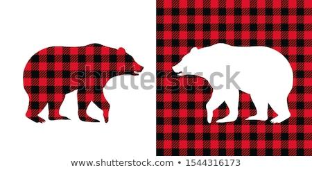 Beer grizzly silhouet dier illustratie Stockfoto © Krisdog