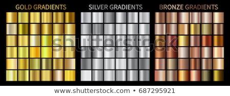 Altın gümüş lüks kareler ayarlamak örnek Stok fotoğraf © yo-yo-