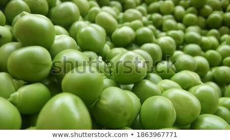 A Can of Fresh Picked Peas Stock photo © bluering