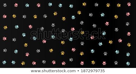 cute colorful kitten pow pattern design Stock photo © SArts
