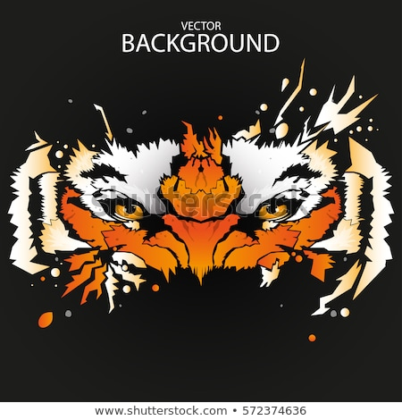 сердиться Cartoon тигр иллюстрация глядя кошки Сток-фото © cthoman