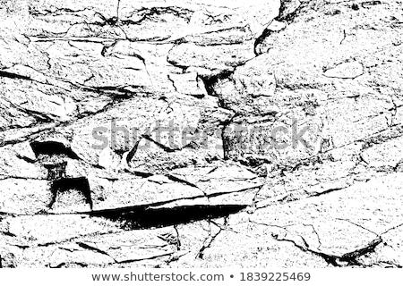 Industrial borde del camino paisaje poder plantas Foto stock © prill
