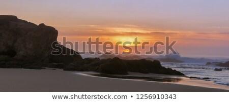 パノラマ 日没 ビーチ カリフォルニア 米国 水 ストックフォト © yhelfman