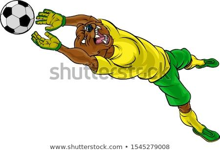 Cartoon arrabbiato calciatore orso guardando Foto d'archivio © cthoman