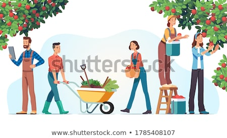 Harvest People and Fruits Cart Vector Illustration Stock photo © robuart