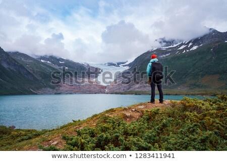 Lány turista külső gleccser Norvégia gyönyörű Stock fotó © cookelma