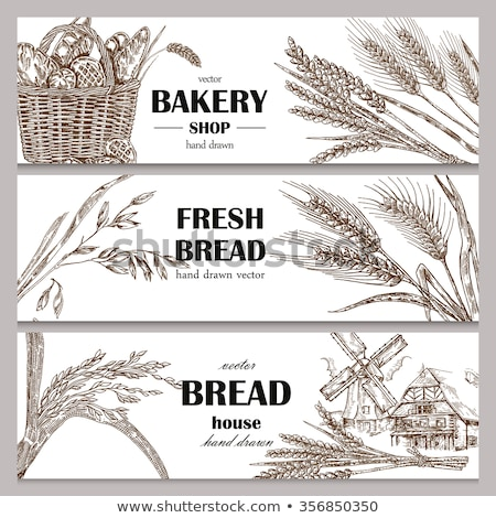 set of horizontal banners about wheat stock photo © netkov1