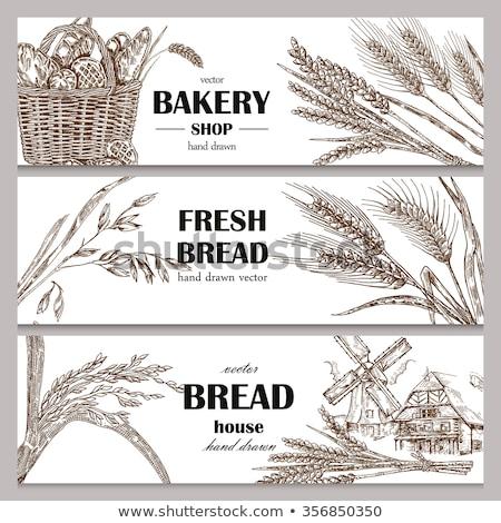 ストックフォト: セット · 水平な · バナー · 小麦 · eps · 10