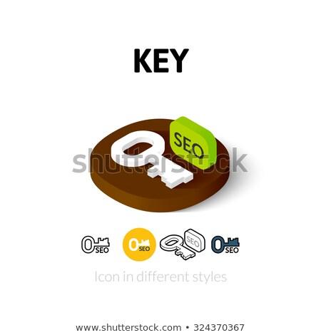 sosyal · medya · 3D · izometrik · vektör · simgeler · masaüstü - stok fotoğraf © netkov1