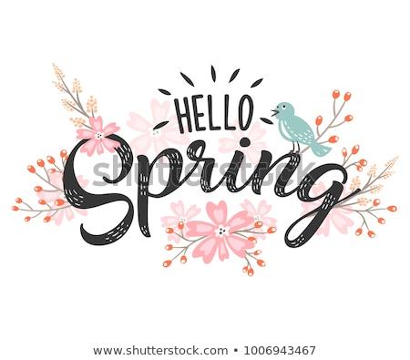 Hello tavasz kártya gradiens háló virágok Stock fotó © adamson