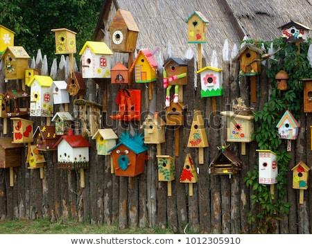 Many birds on birdhouse hanging from tree Stock photo © colematt
