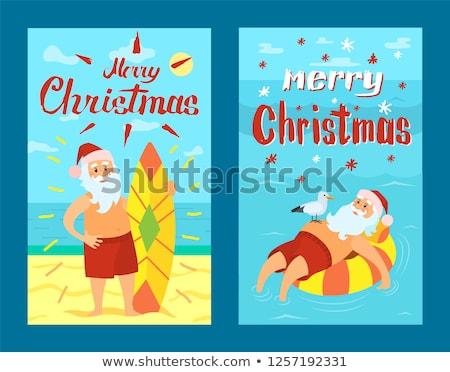 Vidám karácsony mikulás sirály vektor rajzfilmfigura Stock fotó © robuart