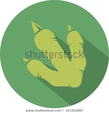 зеленый динозавр след круга дизайна икона Сток-фото © hittoon