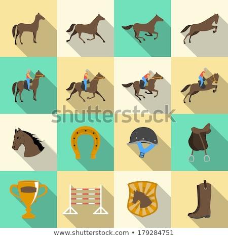 Horse riding flat icon set Stock photo © netkov1