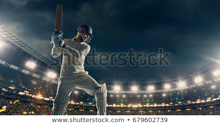 Cricket Players People with Bat and Ball Team Stock photo © robuart