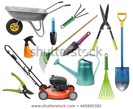 лейка лопатой грабли саду инструменты изолированный Сток-фото © robuart