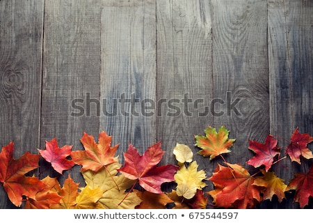 yellow and green leaf with the inscription autumn on the old wooden background stock photo © galitskaya
