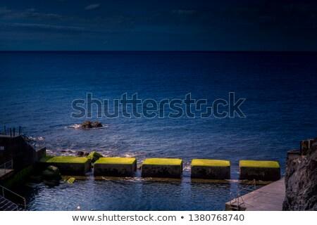 Eiland mooie heldere Blauw oceaan Stockfoto © pixelsnap