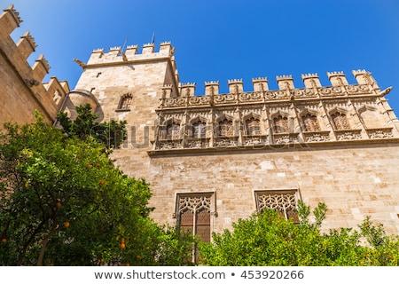 Valencia Spanien Flagge Ansicht Garten Stock foto © aladin66