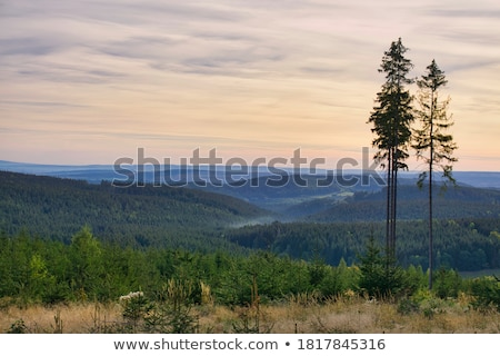 夏場 · 風景 · のどかな · 自然 · 風景 · 湖 - ストックフォト © prill