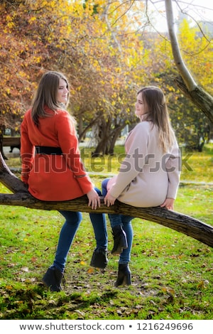 two beautiful blonde sitting on a tree branch stock photo © acidgrey