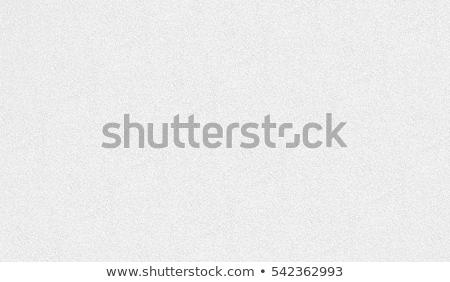 Szürke gabona rendszeres szemcsés monokromatikus textúra Stock fotó © MiroNovak