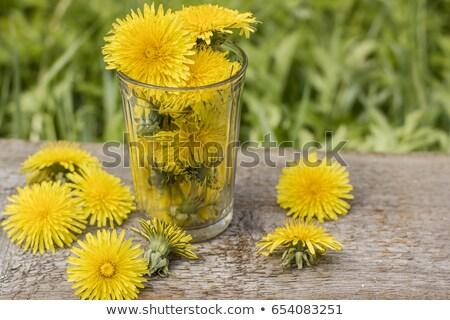 Zdjęcia stock: Dandelion · szkła · jar · zielone · liście · odizolowany · biały