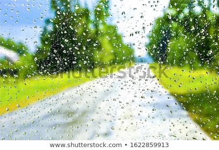 雨滴 フロントガラス 運転 道路 雨の 天気 ストックフォト © alex_grichenko