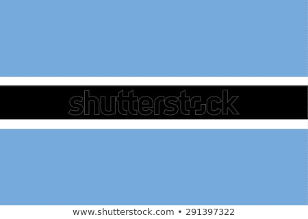 Ботсвана флаг великолепный окрашенный древесины доска Сток-фото © luissantos84