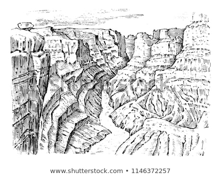 çam · ağacı · orman · Grand · Canyon · Arizona · ABD · gökyüzü - stok fotoğraf © lunamarina