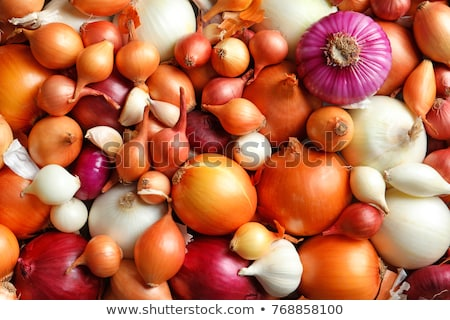 onion vegetable bulbs stock photo © natika