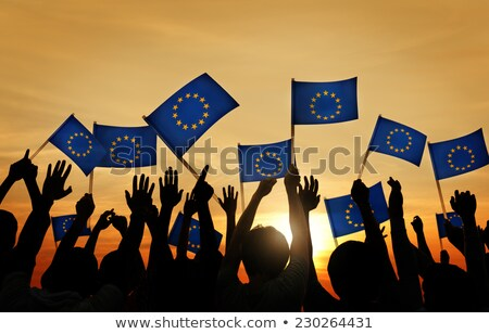 europeu · união · euro · bandeira · ilustração - foto stock © m_pavlov